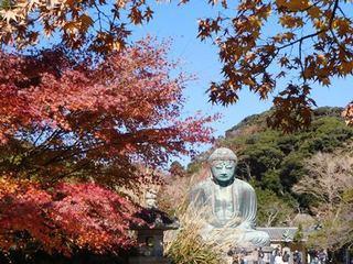 鎌倉大仏紅葉2.JPG