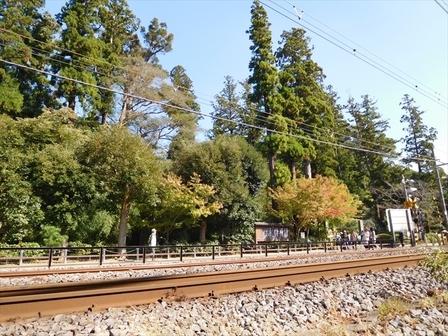 円覚寺門前5_R.JPG