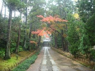 壽福寺紅葉.JPG