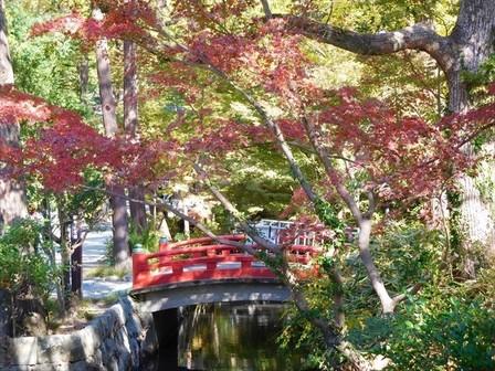 鎌倉国宝館前紅葉2_R.jpg