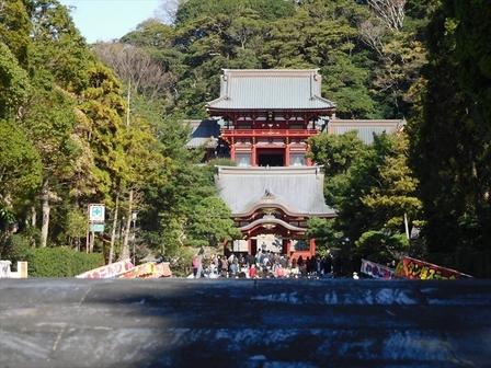 鶴岡八幡宮_R.JPG